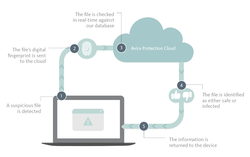 Ever wondered how the Avira Protection Cloud works?