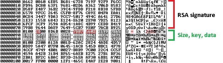 Serialized Dridex binary data after decyption