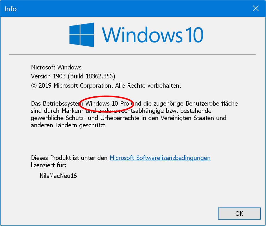 Klarer Fall: Hier handelt es sich um Windows 10-Pro